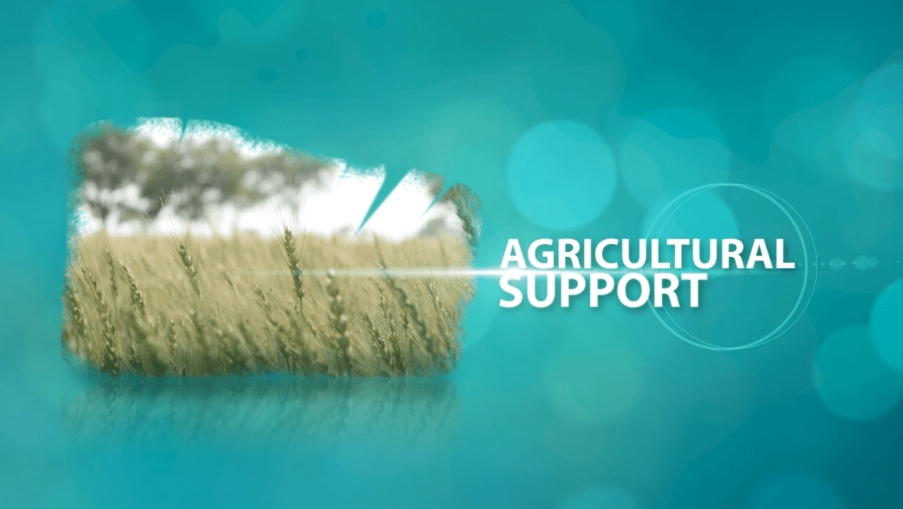 Back to life Documentary Animation chapter - agricultural support - inoace - arif saeed
